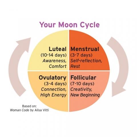 resize22moon-cycle-b11c95e8
