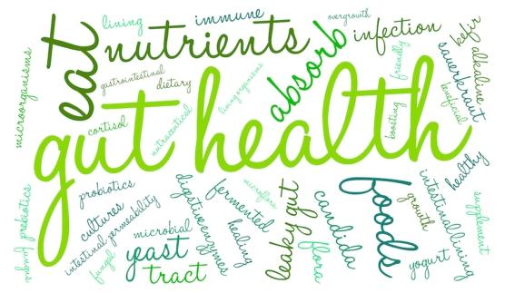 bigstock-Gut-Health-Word-Cloud-93732419